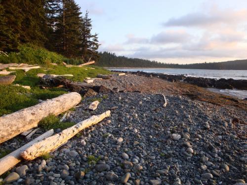 Vancouver Observer, Cape Scott Provincial Park, North Vancouver Island, British Columbia Coast