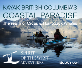 Spirit of the West Adventures Ltd, kayaking the realm of Orcas and Humpback Whales, British Columbia, Canada