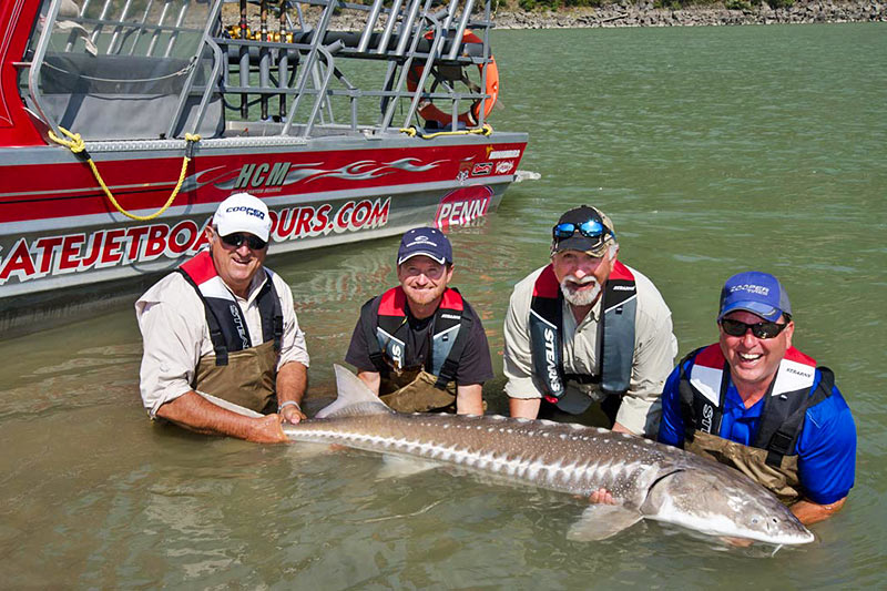 Fall Salmon and Sturgeon Fishing by Vic Carrao, STS Guiding Service in Vancouver, British Columbia