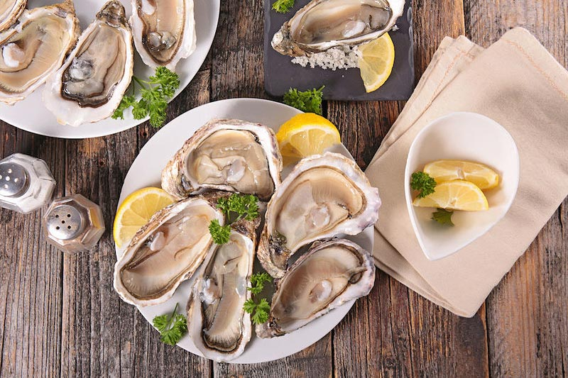 Top 5 Oyster Facts that May Shellshock You: Clayoquot Oyster Festival, Tofino, Vancouver Island, British Columbia
