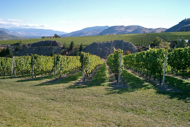 Exploring British Columbia's Okanagan Wine Country, Okanagan Valley, BC, Canada
