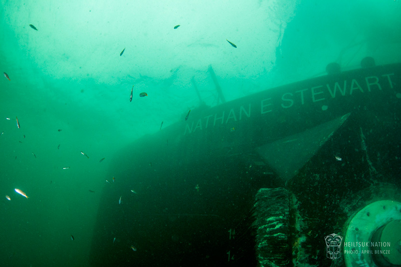 The Nathan E. Stewart, a sunken fuel barge tug that leaked fuel into shellfish harvest grounds near Bella Bella, British Columbia. Photo: April Bencze/Heiltsuk Tribal Council