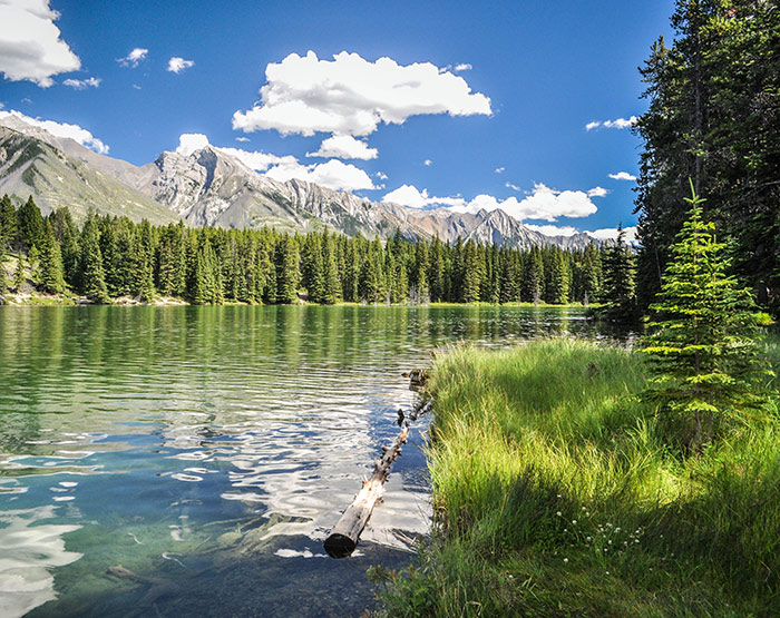 Kootenay National Park, BC Rockies, British Columbia, Canada