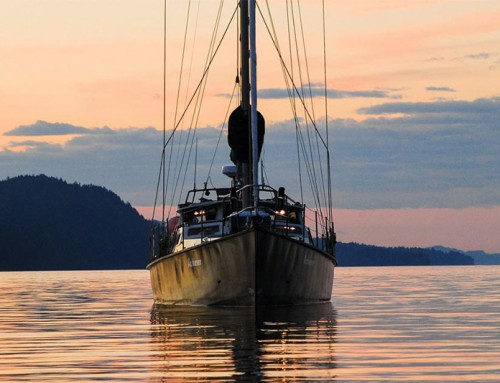 Sail Coastal BC with Raincoast Conservation Foundation