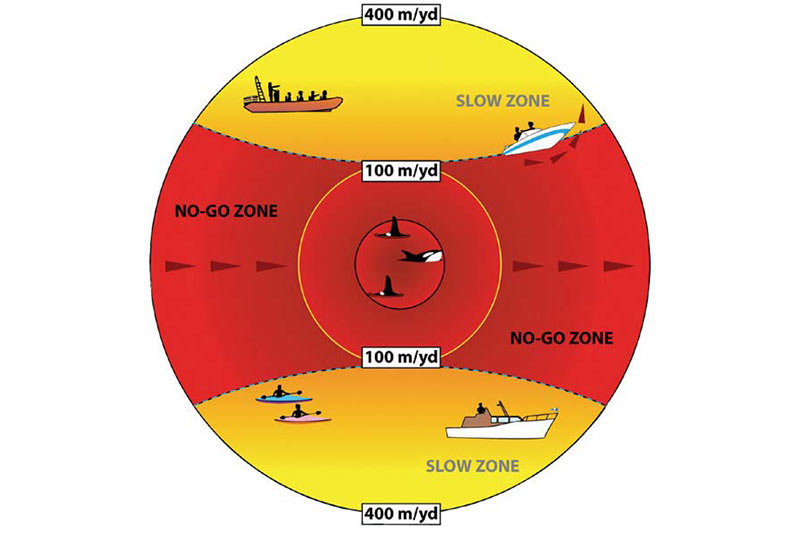 Be Whale Wise - Whale Watching Guidelines in British Columbia, Cetus Research & Conservation Society