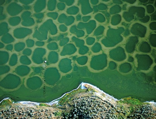 Klikuk, the Sacred Spotted Lake in Osoyoos