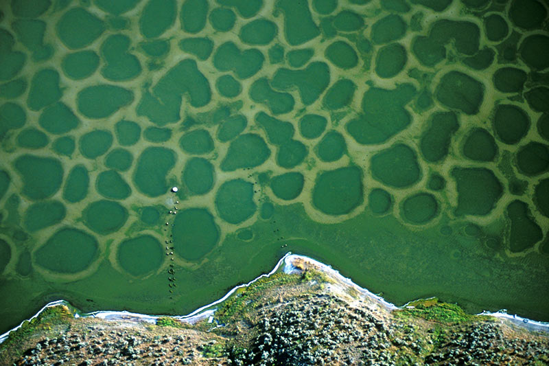 Klikuk, the sacred Spotted Lake in Osoyoos, southern Okanagan, British Columbia
